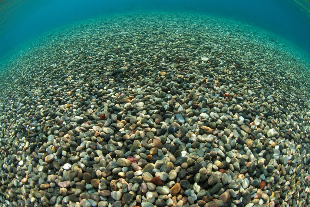 View of multi-coloured pebbles in shallows near shore, Tutuntute, Wetar Island, Barat Daya Islands, Lesser Sunda Islands, Maluku Province, Indonesia : Stock Photo