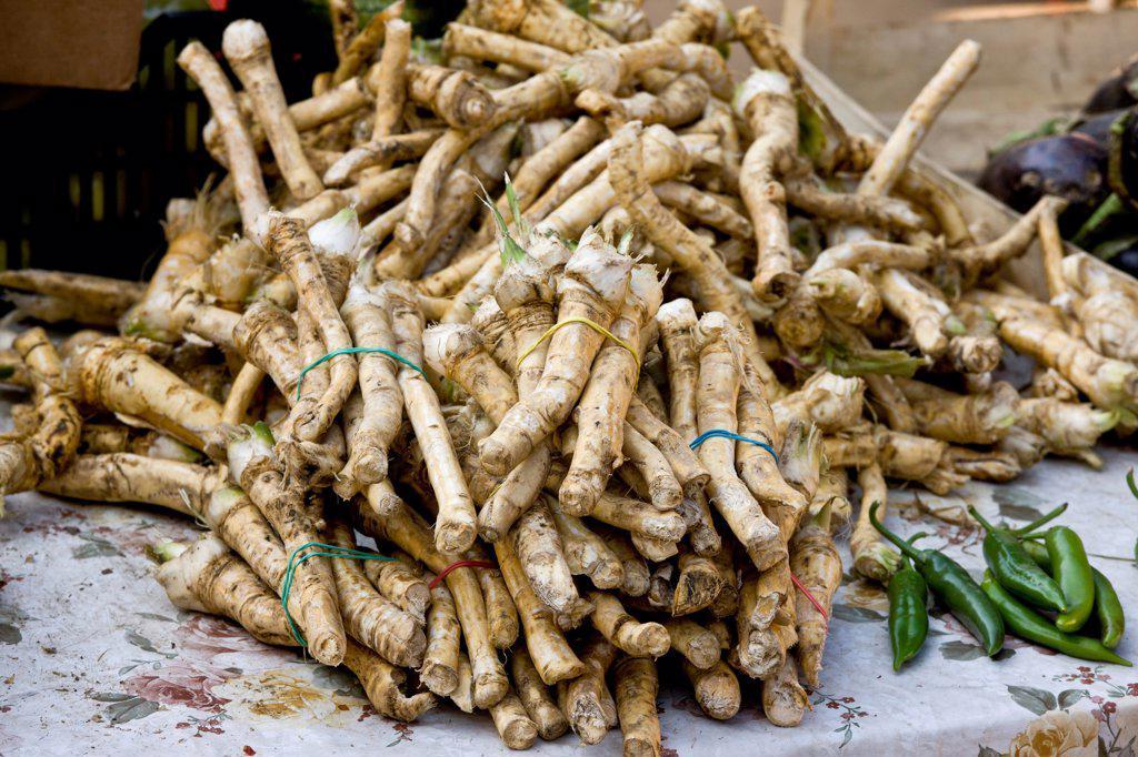 Horseradish (Armoracia rusticana) roots, for sale at fruit and vegetable market, Sigishoara, Transylvania, Romania, october : Stock Photo