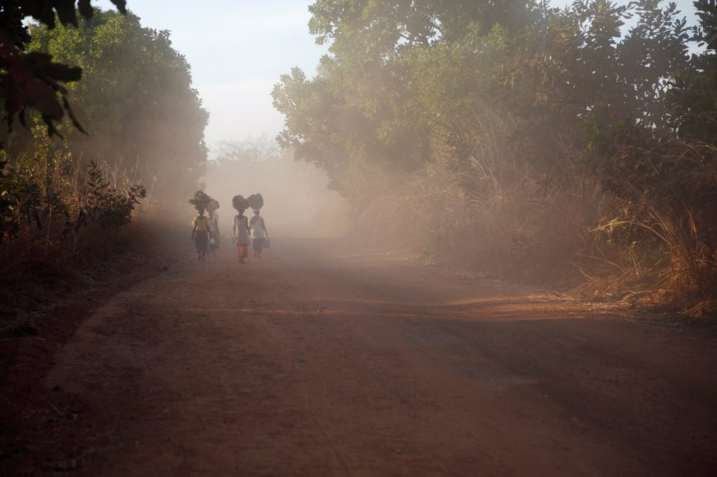 Women carrying goods for market on heads, walking on dusty dirt road, Gambia : Stock Photo