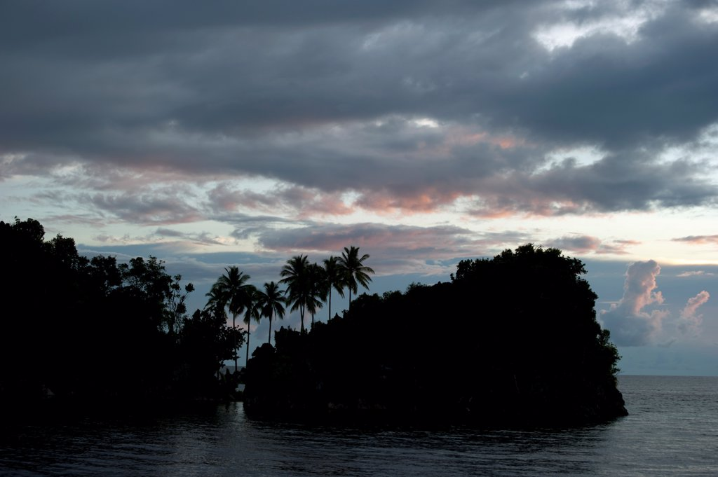 Island with coconut palms silhouetted against clouds at sunset, Raja Ampat Islands (Four Kings), West Papua, New Guinea, Indonesia, december : Stock Photo