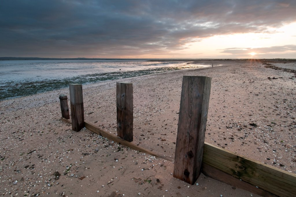 Stock Photo: 4421-33591 Remains of breakwater on beach at sunset, The Swale National Nature Reserve, Isle of Sheppey, Kent, England, autumn