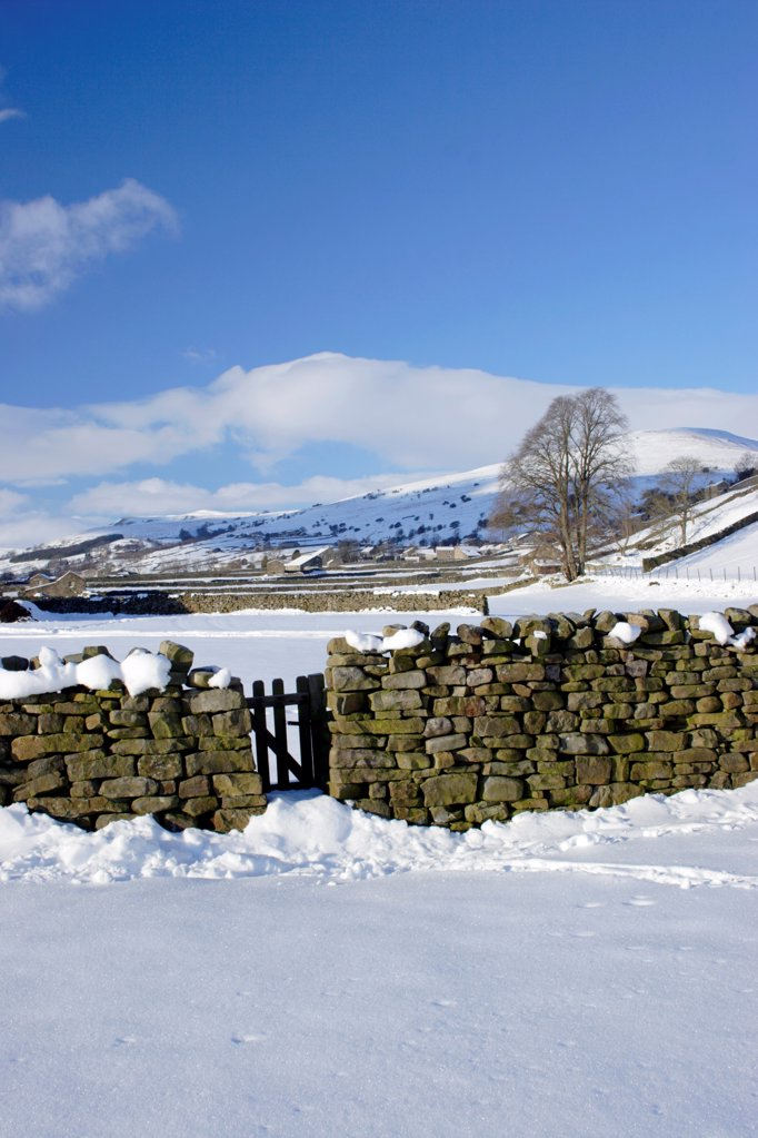 Stock Photo: 4421-34007 Drystone wall and gate in snow covered valley bottom, Gunnerside, Swaledale, Yorkshire Dales N.P., North Yorkshire, England, december