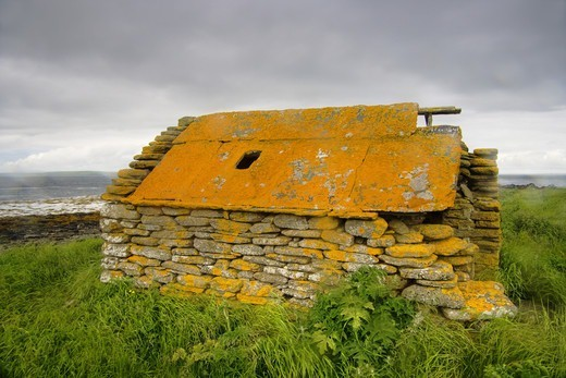 Stock Photo: 4421-34954 Abandoned farm building covered with lichen, Rerwick Head, Mainland, Orkney, Scotland, june