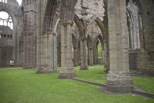 Stock Photo: 4421-35060 Columns in Cistercian abbey ruins, Tintern Abbey, Tintern, Wye Valley, Monmouthshire, Wales, june