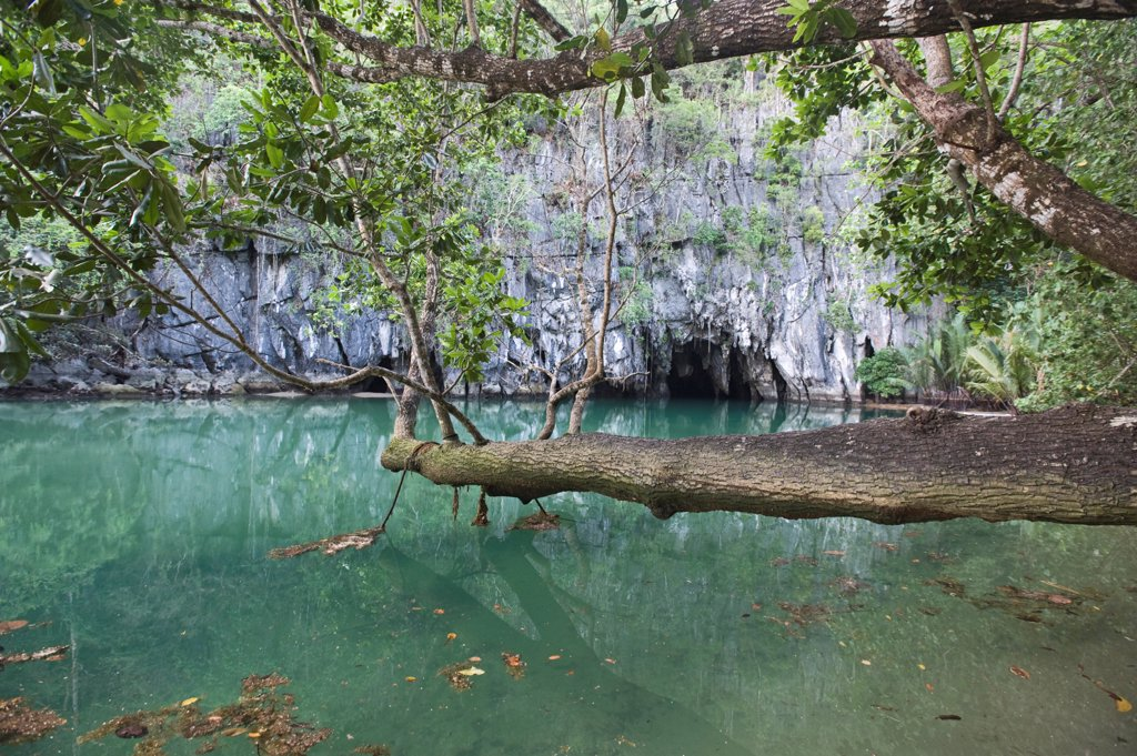 Stock Photo: 4421-35754 Cave entrance to subterranean river, Puerto Princesa Subterranean River N.P., Saint Paul Mountain Range, Palawan Island, Philippines