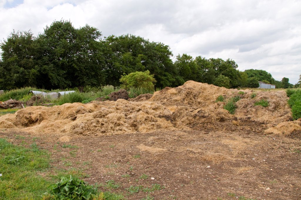 farm yard compost heap : Stock Photo