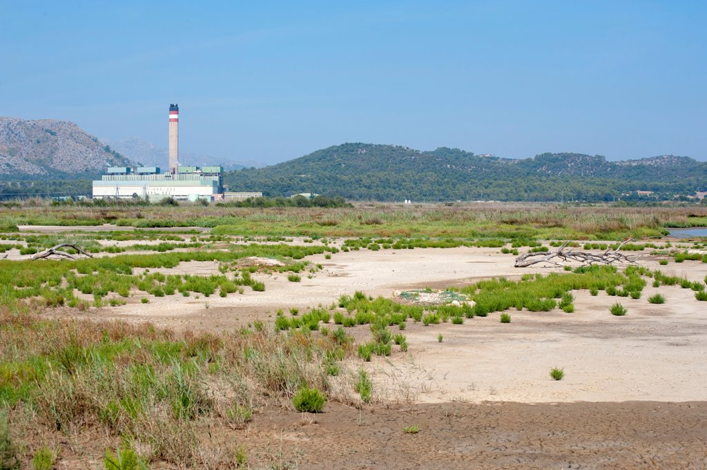 Stock Photo: 4421-39179 View of marshland habitat with Es Murterar coal-fired powerstation in distance, S'Albufera De Mallorca Natural Park, Muro and Sa Pobla, Majorca, Balearic Islands, Spain, September