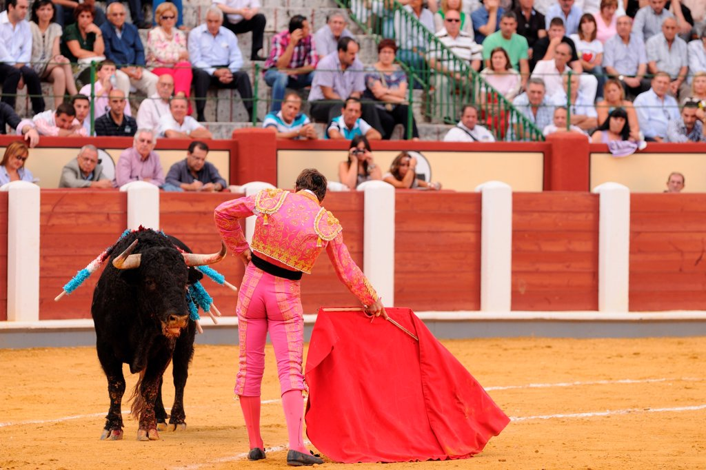 Stock Photo: 4421-39327 Bullfighting, Matador with muleta and sword, fighting bull impaled with banderillas in bullring, 'Tercio de muerte' stage of bullfight, Spain, september