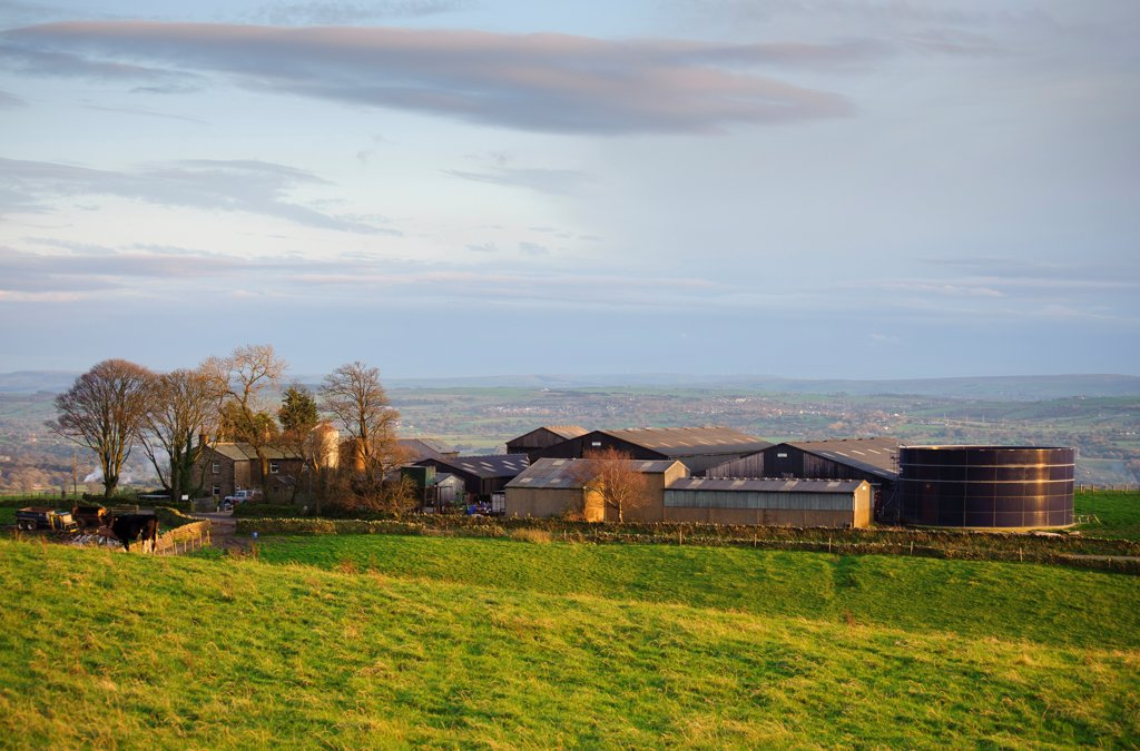 Stock Photo: 4421-39886 Forty Acre dairy farm in evening sunlight, Longridge Fell, Longridge, Preston, Lancashire, England, october