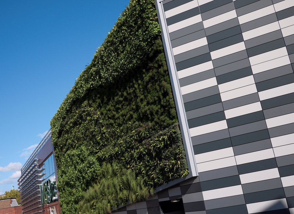 Stock Photo: 4421-40847 'Living Wall System' (Green Wall) growing on wall of M&S store in city, Norwich, Norfolk, England, september