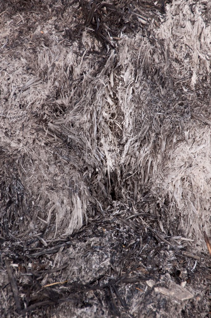 Close up of burnt straw after a farm barn fire : Stock Photo