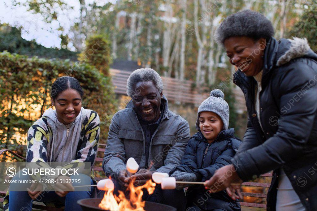 Stock Photo: 4428R-15137795 Grandparents and grandchildren roasting marshmallows over campfire