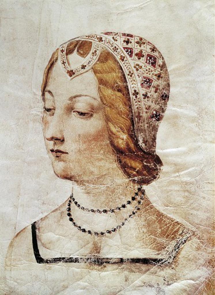 Portrait Of Laura De Noves Proven Al Lady Inspiring The