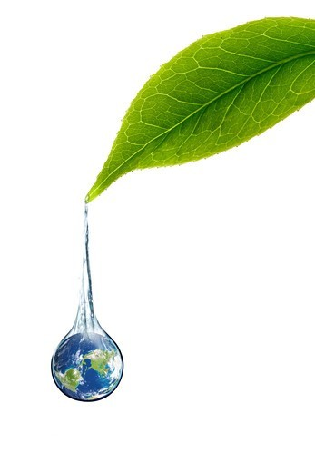 Stock Photo: 4445R-4950 Digital composite of green leaf and earth