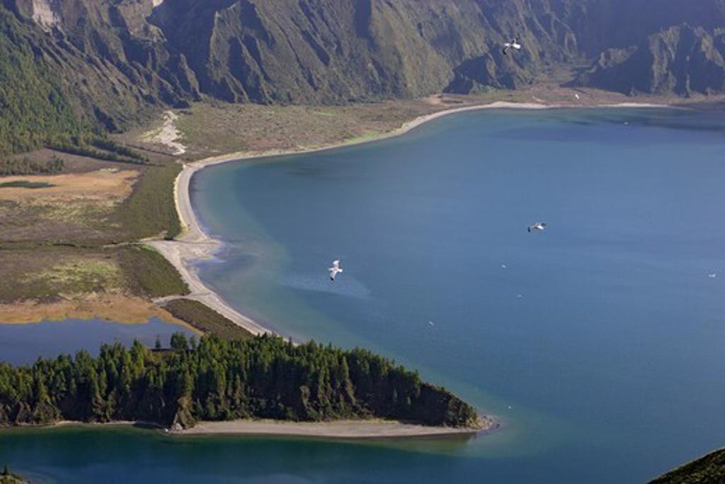 Lagoa do Fogo, Azores, Portugal : Stock Photo