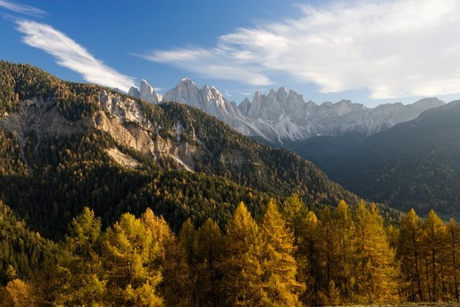 Stock Photo: 4449-37152 St. Magdalena, Villnoess Valley, Geisler range in background, Trentino-Alto Adige/Suedtirol, Italy