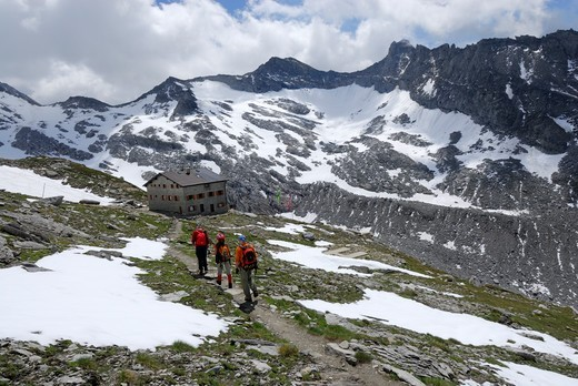 Stock Photo: 4449-39721 Three mountaineers near hut Hochfeilerhuette, Hochfeiler, Zillertal Alps, South Tyrol, Alto Adige, Italy