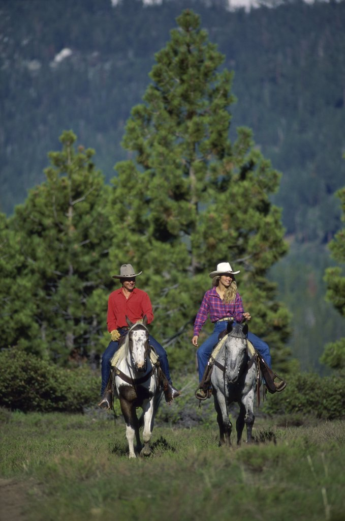 Stock Photo: 445-3612C Donner Equestrian Center, Tahoe, Sierra Nevada Mountains, California, USA