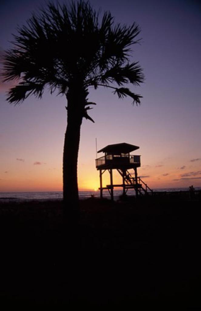 Lido Beach Sarasota Florida USA : Stock Photo