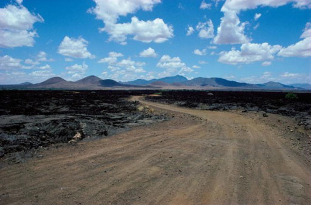 Tsavo National Park Kenya : Stock Photo