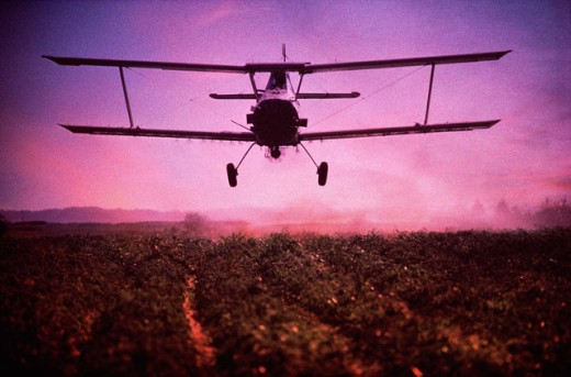 Stock Photo: 459-1195 Crop dusting aircraft flying over a farm field