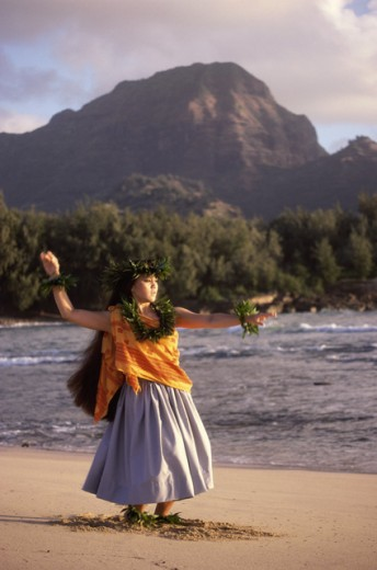 Stock Photo: 459-783D Hawaii