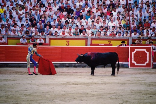 Stock Photo: 46-410E Matador waving a red cape in front of a bull