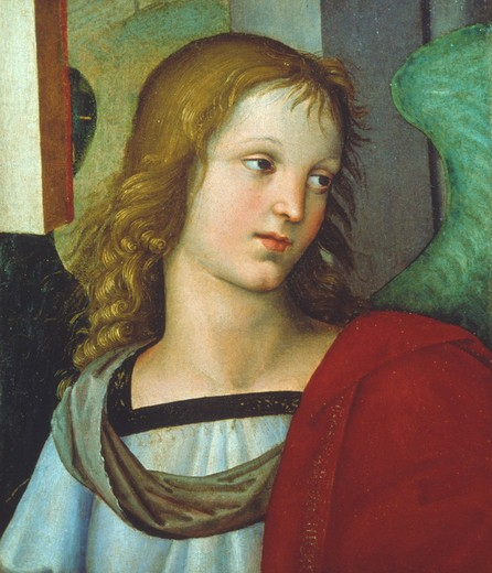 Stock Photo: 463-282703 Raphael / Angel / c.1500