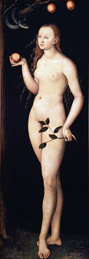 Stock Photo: 463-3234 Eve 1528 Lucas Cranach the Elder (1472-1553 German) Oil On Wood Panel Galleria degli Uffizi, Florence, Italy