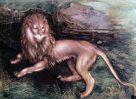 Stock Photo: 463-3323 The Lion Albrecht Durer (1471-1528 German)