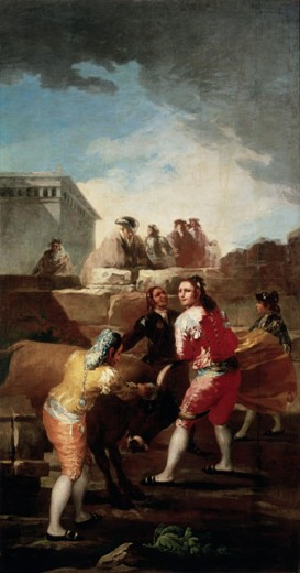 Stock Photo: 463-4258 Fight with Young Bulls