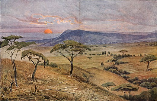 Africa: Masai Steppe in Central Africa