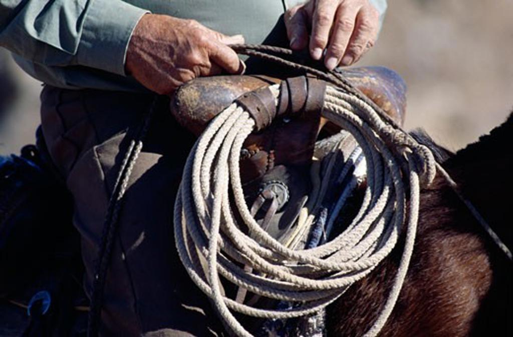 Stock Photo: 464-1122 Man sitting on horseback with lasso near saddle,  mid secion