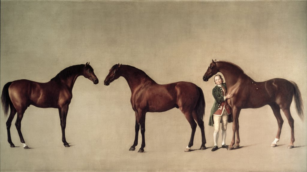 Stock Photo: 475-1088 Whistle Jacket & Simon Cubb