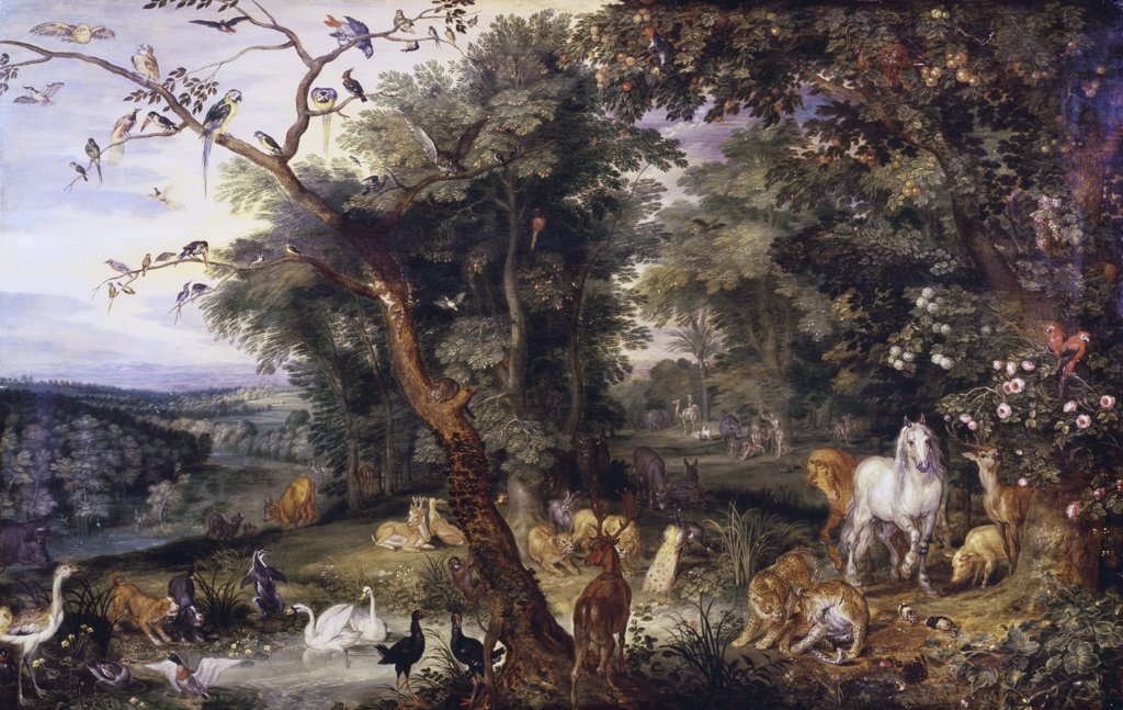 Stock Photo: 475-1543 The Garden of Eden