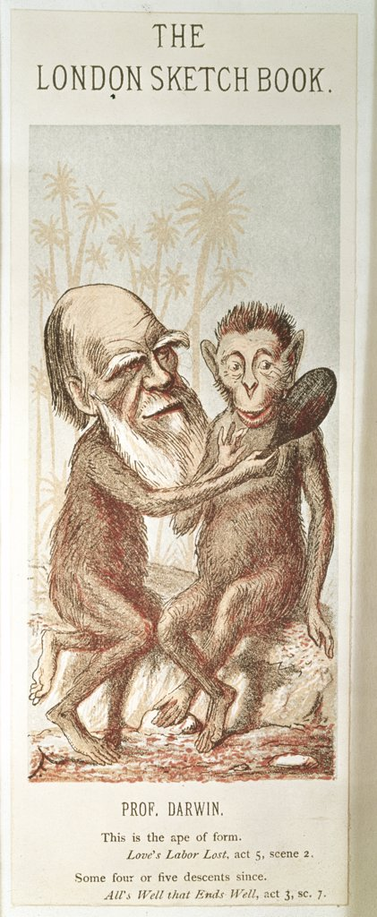 Stock Photo: 475-1999 Darwin With An Ape , Cartoon 