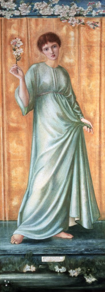 Stock Photo: 475-2429 Spring