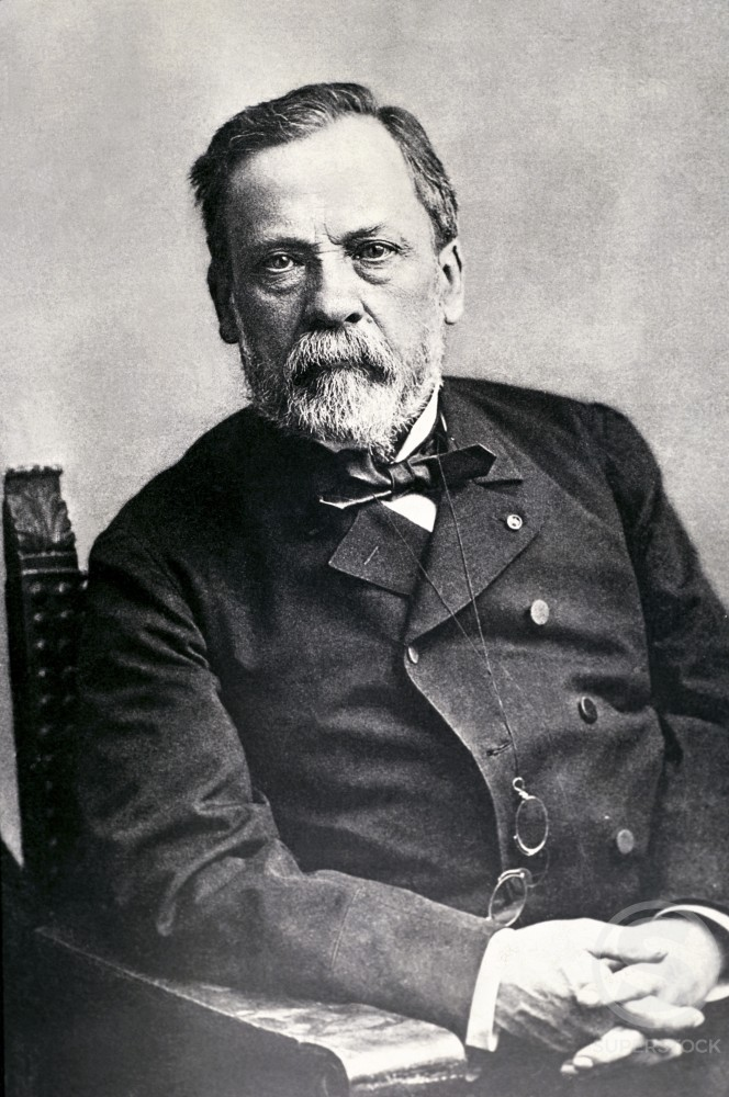 Stock Photo: 486-354 Louis Pasteur 