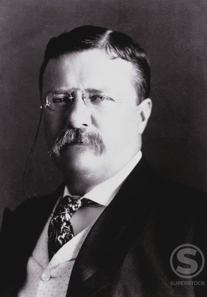 Stock Photo: 486-671 Theodore Roosevelt, (1858-1919), 26th President of the United States