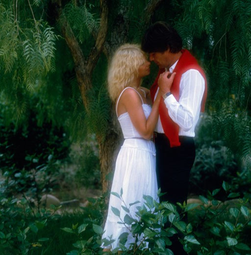 Young couple romancing in a forest : Stock Photo