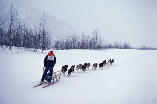Stock Photo: 491-649 Valdez