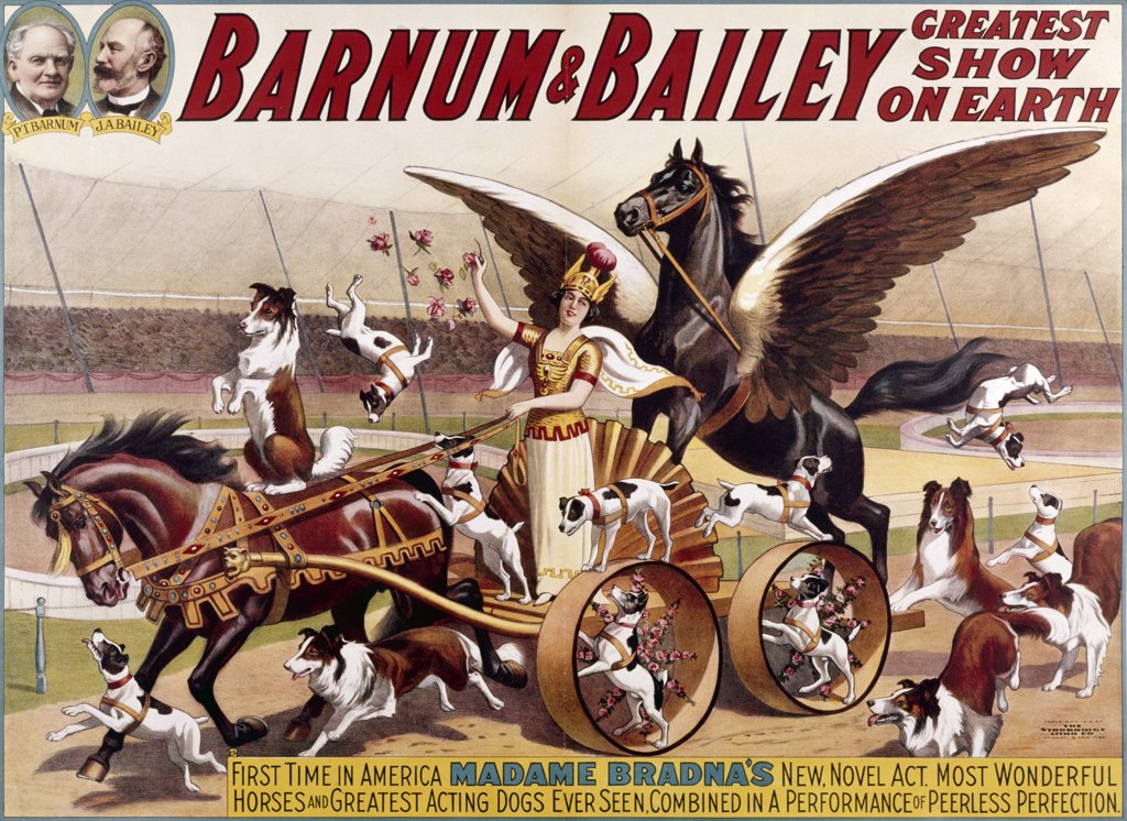 Madame Bradna's Horses and Dogs by Barnum & Bailey,  Poster, : Stock Photo