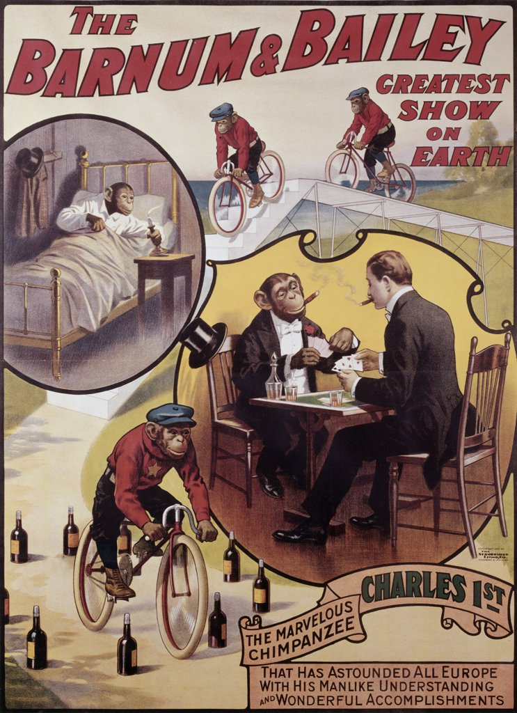 Charles 1st, The Marvelous Chimpanzee Barnum & Bailey Greatest Show on Earth Posters : Stock Photo