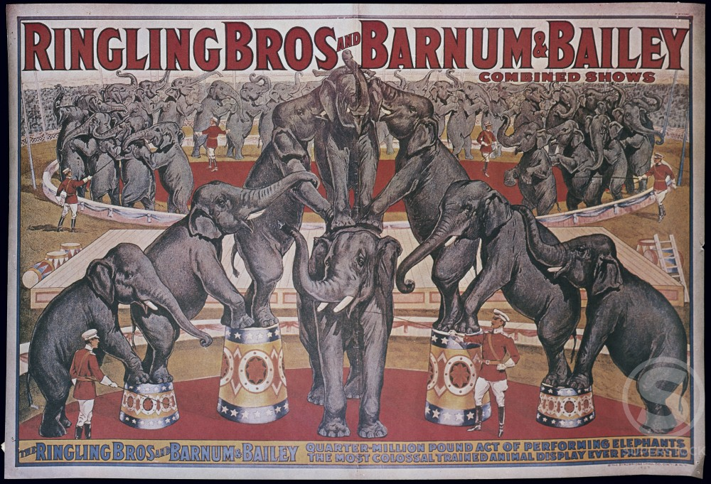 Stock Photo: 500-135920 Ringling Brothers and Barnum and Bailey, performing elephants in circus, poster, Nostalgia UK, 500