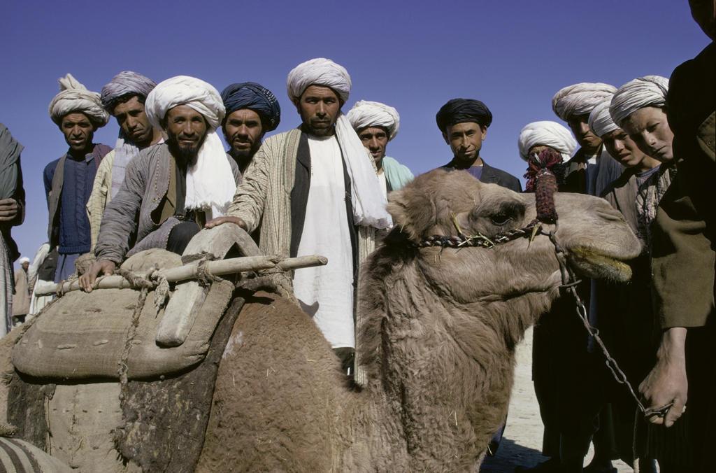 Turkmen Tribesmen  Afghanistan : Stock Photo