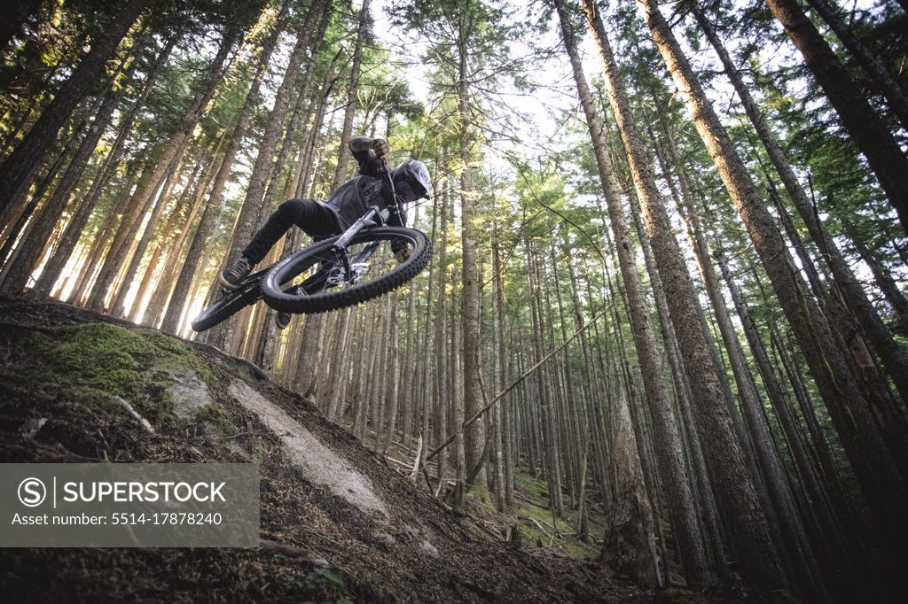 Stock Photo: 5514-17878240 Mountain biker jumps down trails in north bend Washington