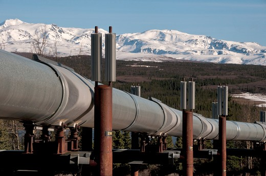 Pipeline, Trans-Alaskan Pipeline, Big Delta, Alaska, USA : Stock Photo