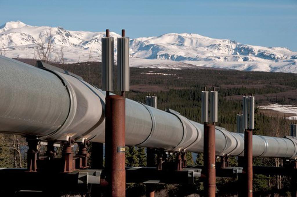 Stock Photo: 647-2066 Pipeline, Trans-Alaskan Pipeline, Big Delta, Alaska, USA
