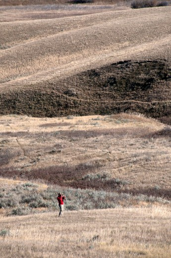 Man hiking in a desert, Grasslands National Park, Saskatchewan, Canada : Stock Photo