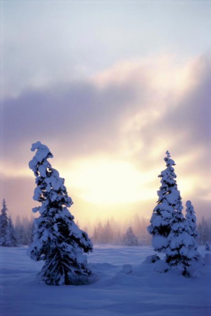 Stock Photo: 647-549B Girdwood Alaska USA